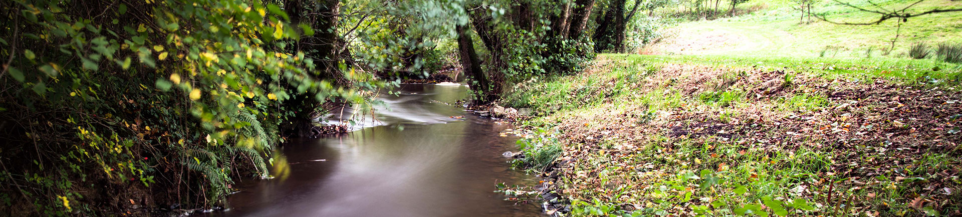 A dramatic stream depicting environmental effects, close to Acres Insurance Brokers head office