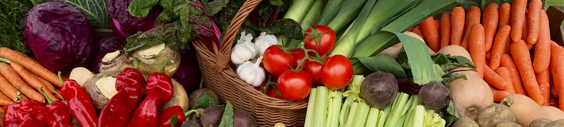 A selection of vegetables in baskets from a local small holding near to Acres Insurance Brokers head office